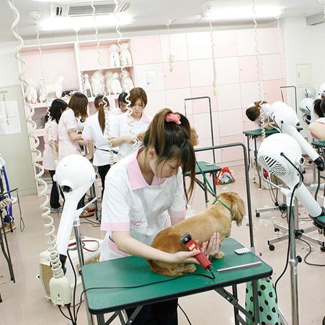 名古屋ECO動物海洋専門学校 【一人でも初めてでも安心】 学校説明会3