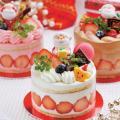 辻製菓専門学校 ☆ 一人で1台 クリスマスケーキをつくってみよう ☆