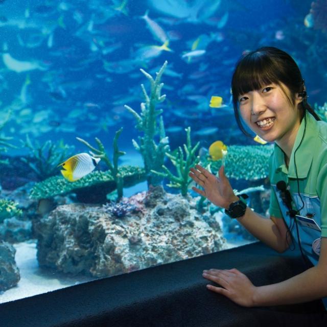 仙台ECO動物海洋専門学校 水族館・観賞魚アクアリストのお仕事体験1