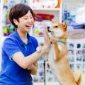 国際ペットワールド専門学校 3/23(土) 犬の訓練士!ドッグトレーナーを体験しよう!