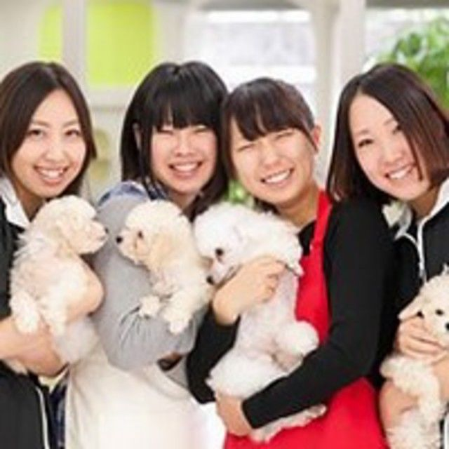 高崎動物専門学校 【新3年生対象】春の一日体験SPオープンキャンパス!!3