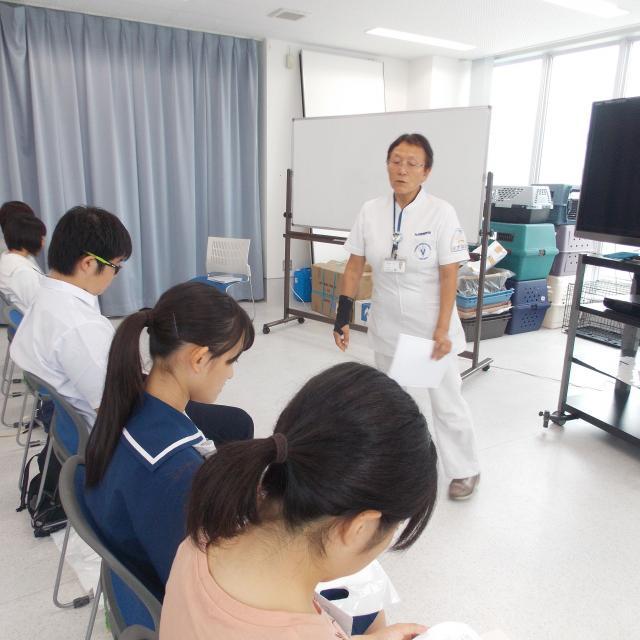 九州動物学院の授業を体験を体験しよう!