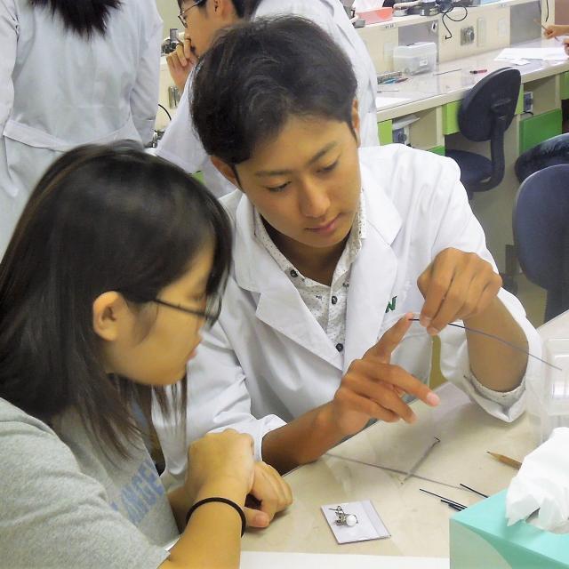熊本歯科技術専門学校 歯科技工士科 歯科材料を使って実習を体験しよう♪2