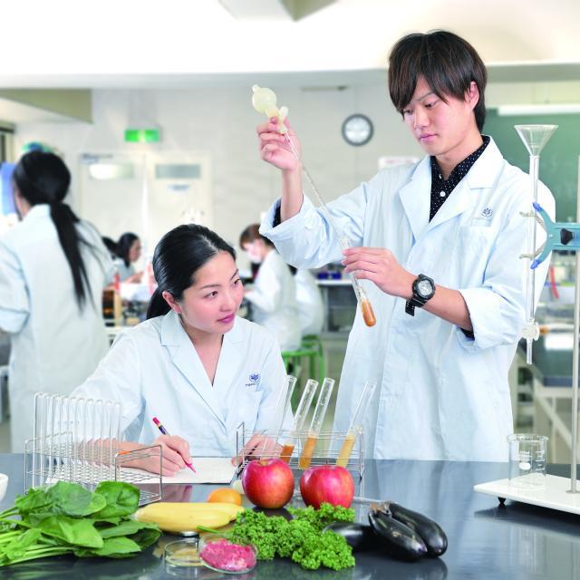 大手前栄養製菓学院専門学校 【栄養学科】嚥下食(嚥下調整食)の調理・試食体験1