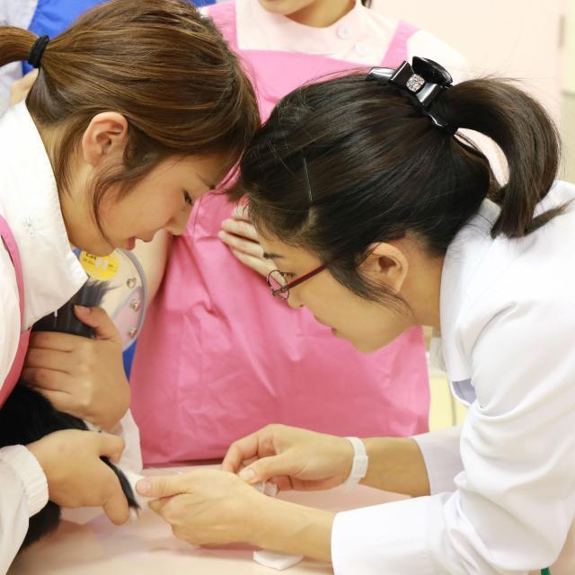 YIC京都ペット総合専門学校 動物看護師のおしごと~血液検査をしてみよう~4