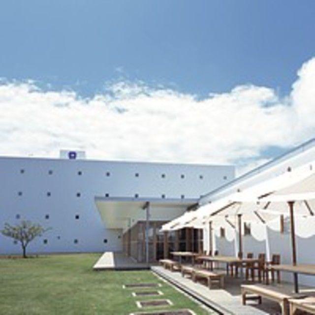 専門学校 琉球リハビリテーション学院 オープンキャンパス:メディカルスポーツ柔道整復学科(昼間主)2