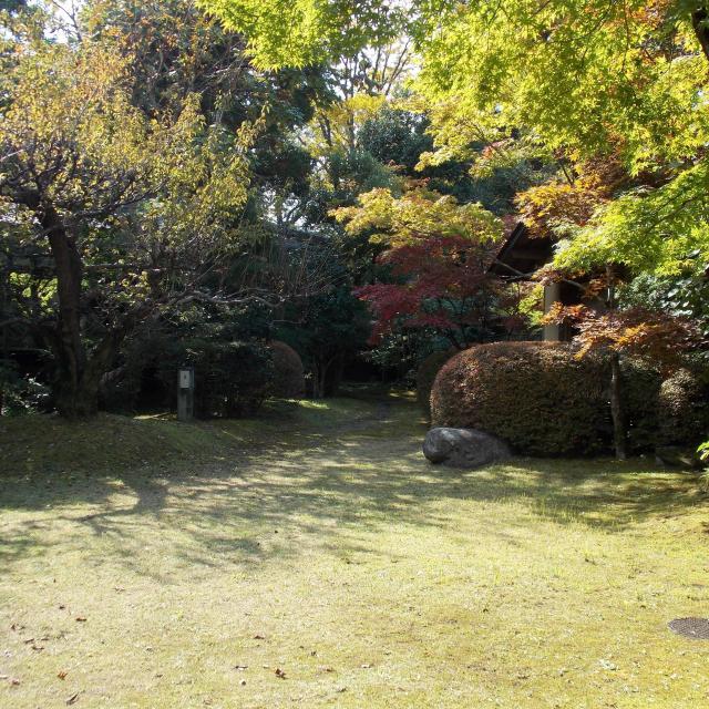 西鉄国際ビジネスカレッジ 日本の人気観光地&穴場スポットを一堂に集めました!2