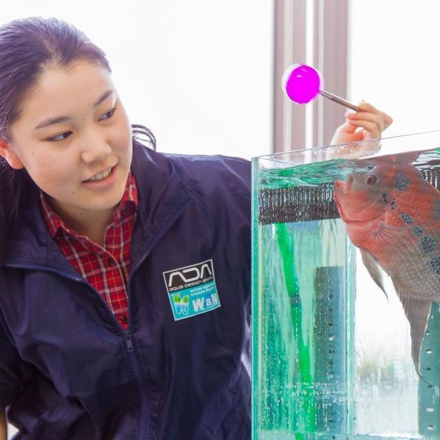 国際ペットワールド専門学校 【新実習室完成】水族館・ドルフィントレーナー体験をしよう!3