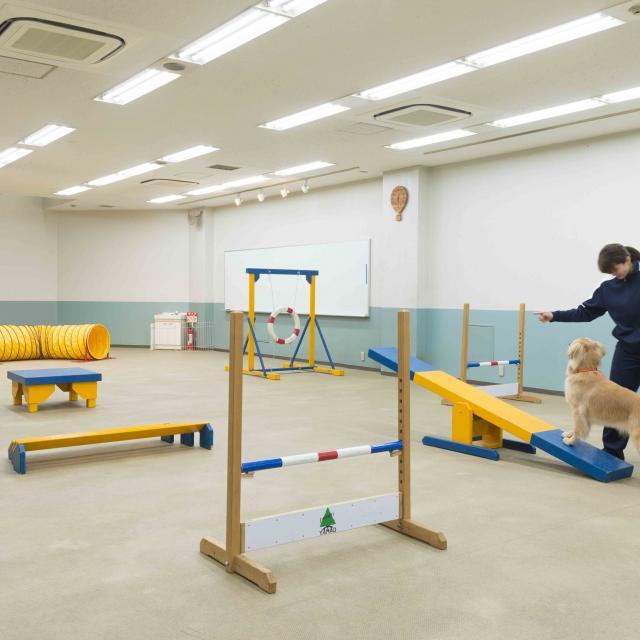 中央動物専門学校 H30 オープンカレッジ3