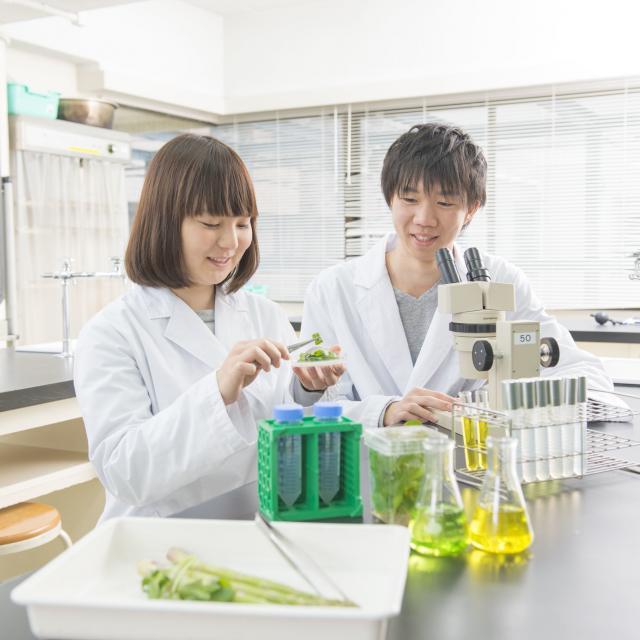 東京バイオテクノロジー専門学校 【バイオフェス:先生と在校生の雰囲気が分かる!】2