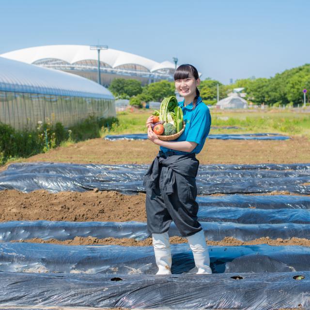 新潟農業・バイオ専門学校 【先端農業・農業分野】生産・販売・経営を目指す方へ!1