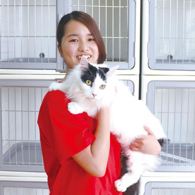 専門学校 九州スクール・オブ・ビジネス 2月の体験入学(トリマー/動物看護/ドッグトレーナー)3