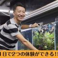大阪ECO動物海洋専門学校 水族館・アクアリスト体験! ★お仕事W体験DAY★