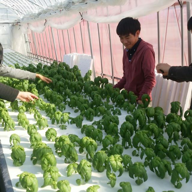 新潟農業・バイオ専門学校 食・農・バイオ・花を仕事にしよう!オープンキャンパス開催!4