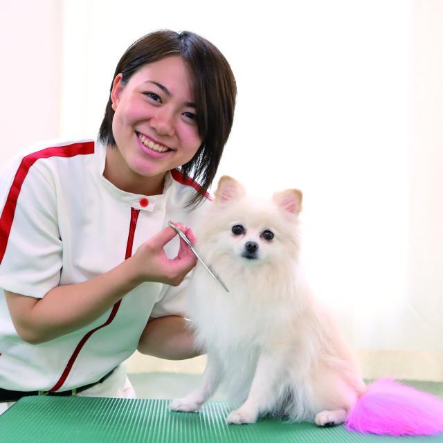 日本動物専門学校 ♪オープンキャンパス1