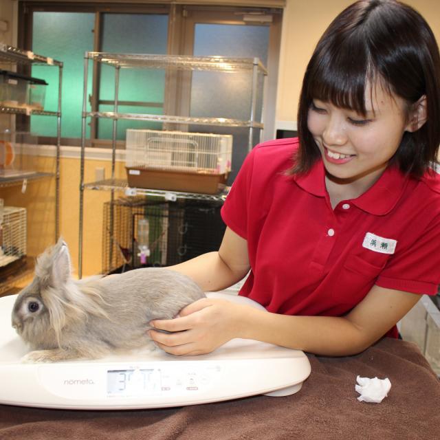 大宮国際動物専門学校 『美容系学科』学科別体験入学3