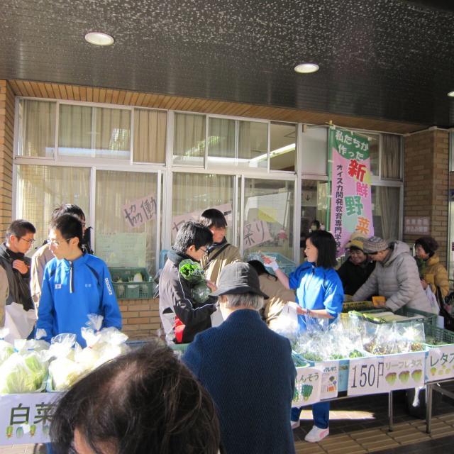 オイスカ開発教育専門学校 冬野菜、収穫してみませんか?12月のオープンキャンパス2