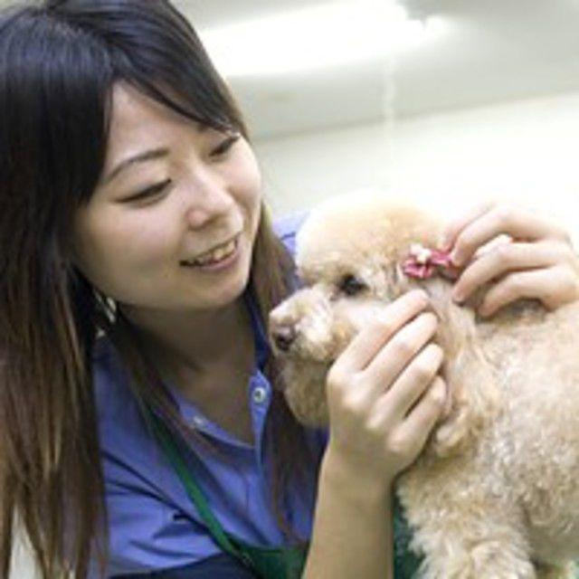 愛知ペット専門学校 わんちゃんの健康チェック体験4