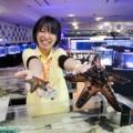 【G:水族館アクアリスト★体験】珍しいサカナのエサやり&タッチ