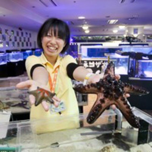 神戸動植物環境専門学校 【G:水族館アクアリスト★体験】珍しいサカナのエサやり&タッチ2