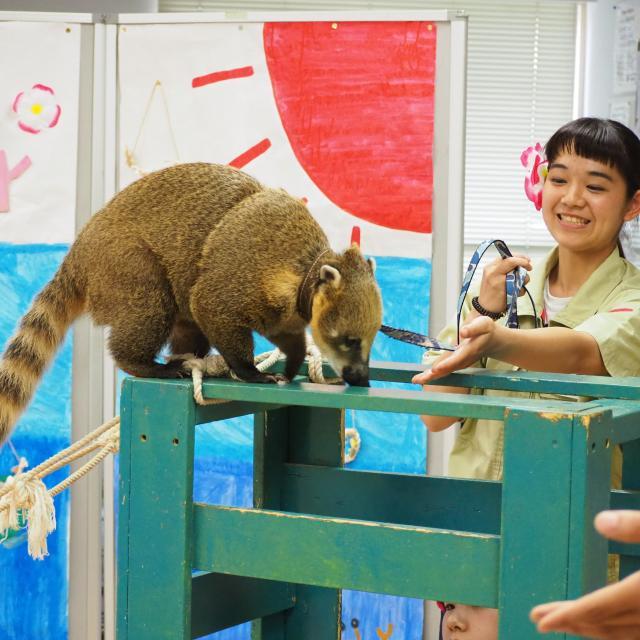 国際動物専門学校 春キャン1