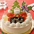 経専調理製菓専門学校 12/21(土) クリスマスケーキを作ってお持ち帰り☆+コピー