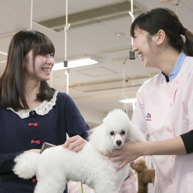 東京愛犬専門学校 本気で動物のことを考えるなら JKC推薦指定校の体験入学へ!1