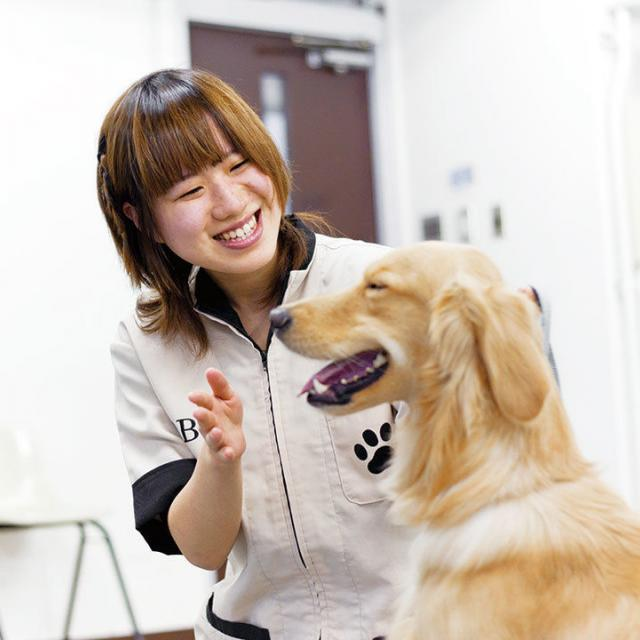 大阪ビジネスカレッジ専門学校 犬のきもち☆1