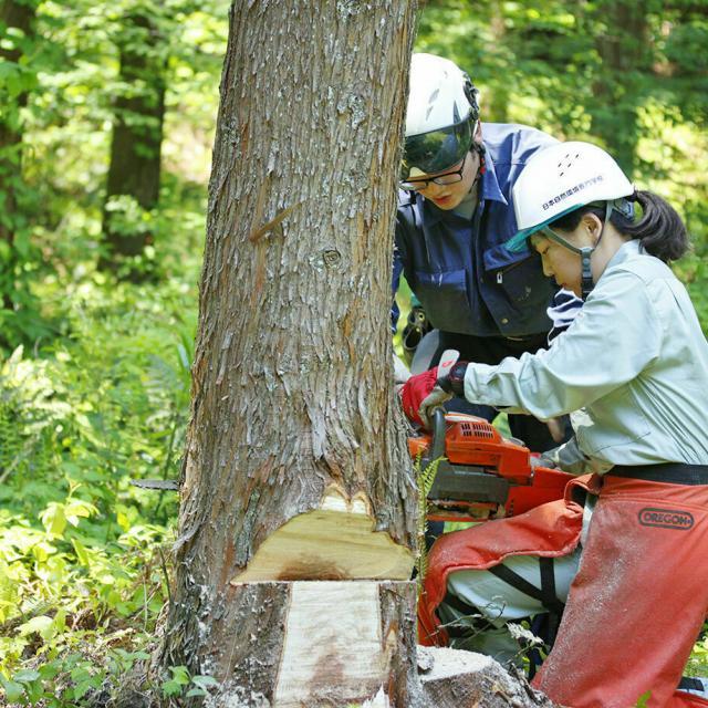日本自然環境専門学校 森林の中で働きたい!森を守りたい!4