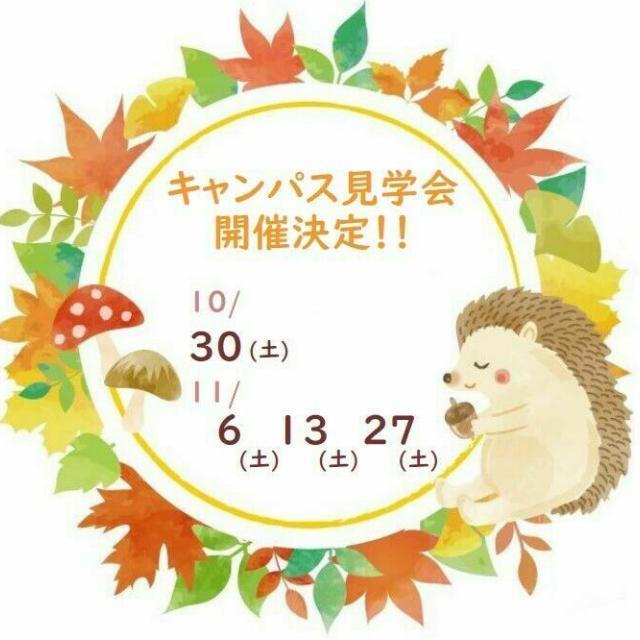 頌栄短期大学 10月11月、キャンパス見学会 開催!1