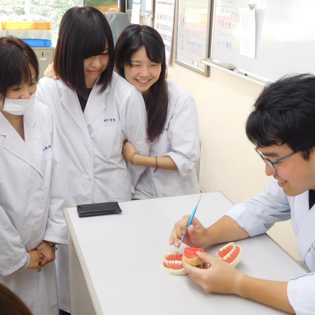 仙台歯科技工士専門学校 | 資料...