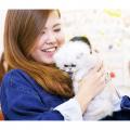 大阪ビジネスカレッジ専門学校 猫ちゃんのヒミツが知れるかも…猫博士になろう!
