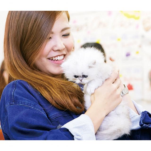 大阪ビジネスカレッジ専門学校 猫ちゃんのヒミツが知れるかも…猫博士になろう!1