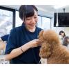 大阪ビジネスカレッジ専門学校 プロトリマーの技を伝授!カット体験