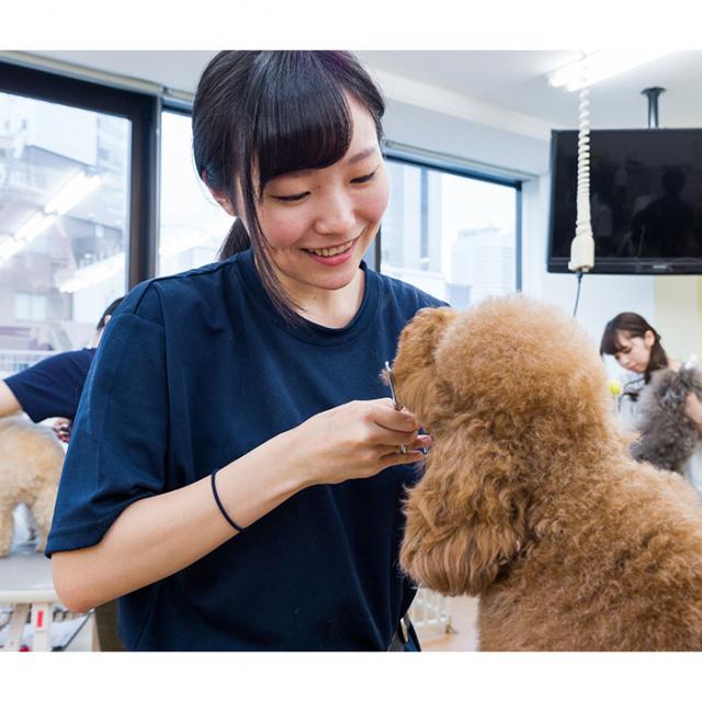 大阪ビジネスカレッジ専門学校 プロトリマーの技を伝授!カット体験1
