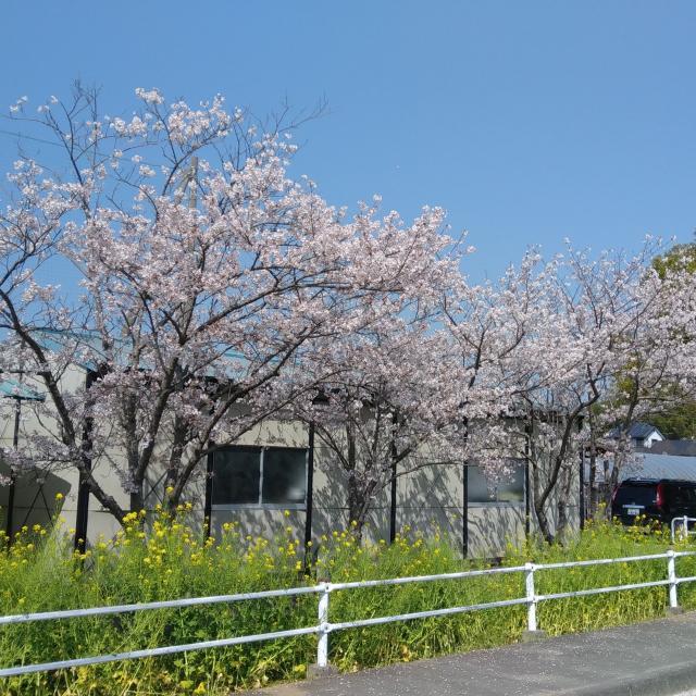 オイスカ開発教育専門学校 4月入学がまだまだ間に合います!オープンキャンパス!4