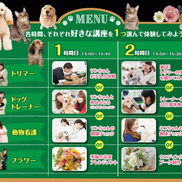 大阪ビジネスカレッジ専門学校 ペット・フラワーフェス2
