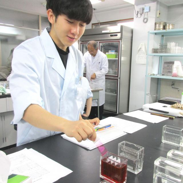 九州医学技術専門学校 「臨床検査科」の体験学習(ランチつき♪)2