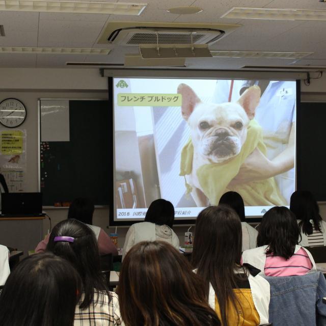 国際動物専門学校 学校説明会4