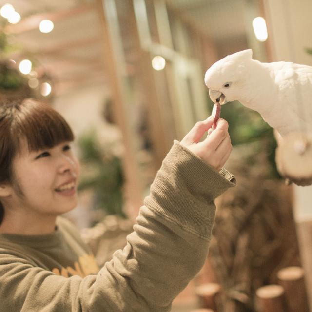 専門学校 福岡ビジョナリーアーツ 【ペット】動物園飼育員さんのお仕事体験1