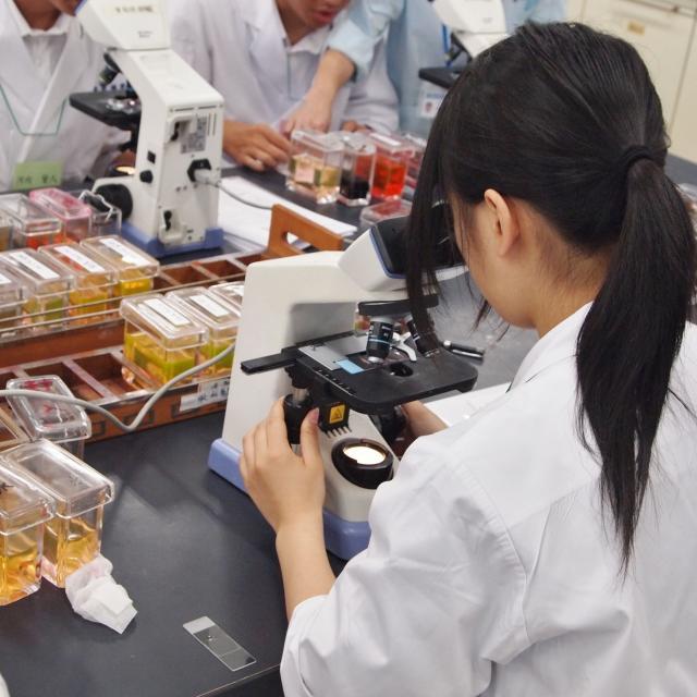 東武医学技術専門学校 臨床検査技師を知る!体験できる!1日です♪3