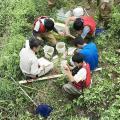 日本自然環境専門学校 野生動植物に関する仕事がしたい!