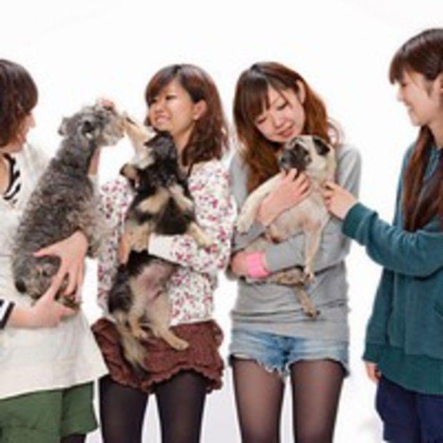 愛知ペット専門学校 担当犬体験(総合基礎編)2