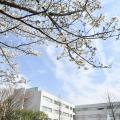 湘南工科大学 春の大学説明・入試相談会