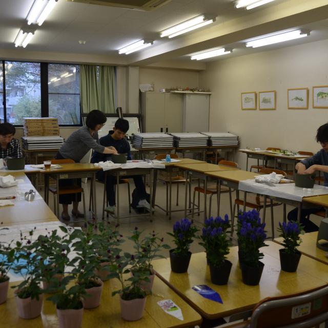 日本ガーデンデザイン専門学校 カラーレッスン・色から考える庭づくり2