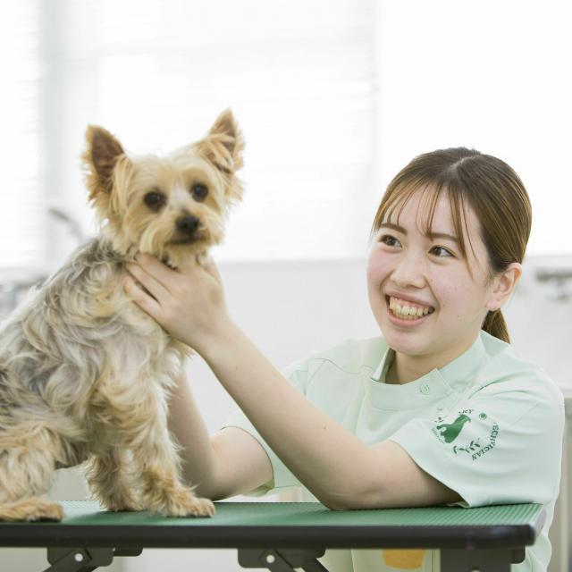 湘央生命科学技術専門学校 オープンキャンパス☆動物看護師 体験コース3
