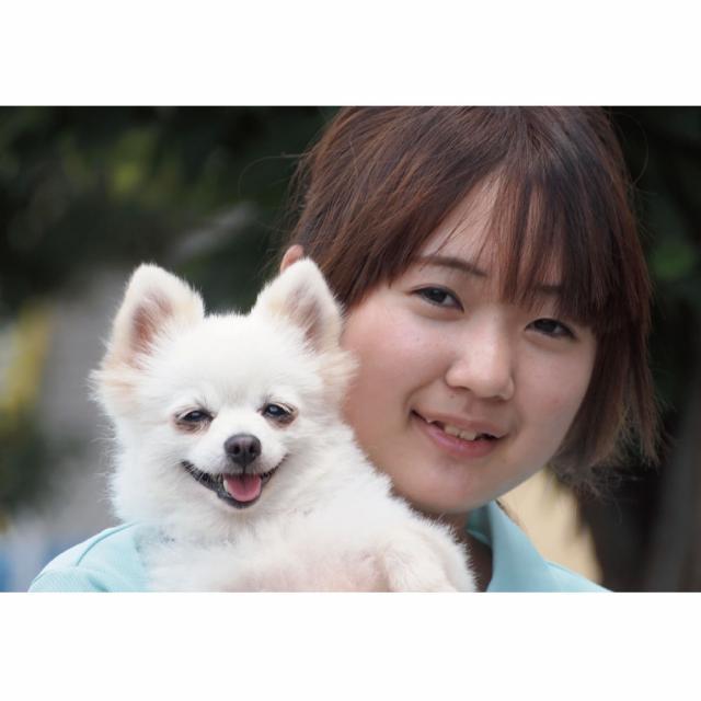 愛知ペット専門学校 わんちゃんの健康チェック体験1