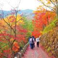 大阪保育福祉専門学校 法人内施設の子どもと一緒にお月見を楽しもう♪