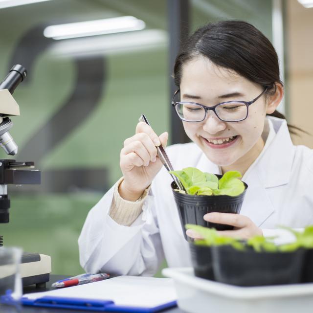 東京バイオテクノロジー専門学校 【植物バイオコース】オープンキャンパス:バイオのコース体験3