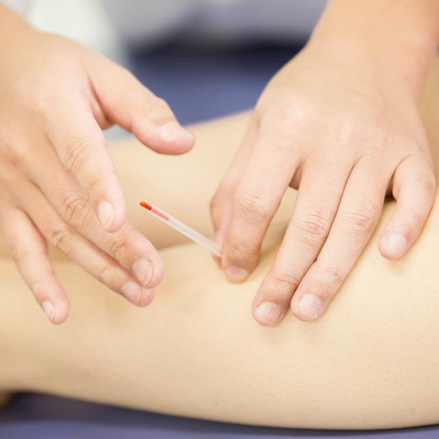 東京衛生学園専門学校 鍼灸治療の現場を見学! 治療見学会1